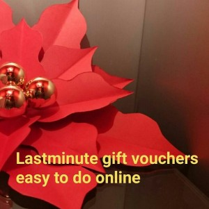 Christmas image for vouchers
