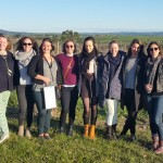 Team outing in the Yarra Valley 2016